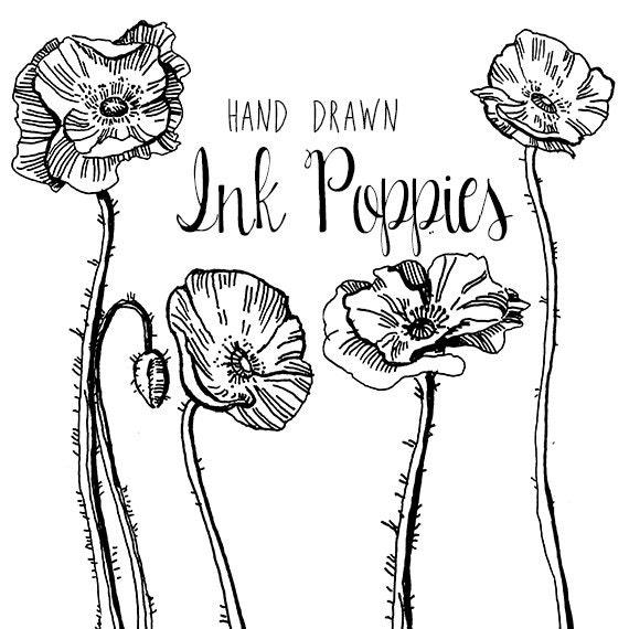 Ink drawing poppy flower clipart flowers clip art digital mightylinksfo