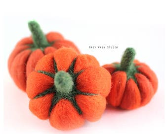 Set of 3 Needle Felted Pumpkins, for your fall or autumn home decor