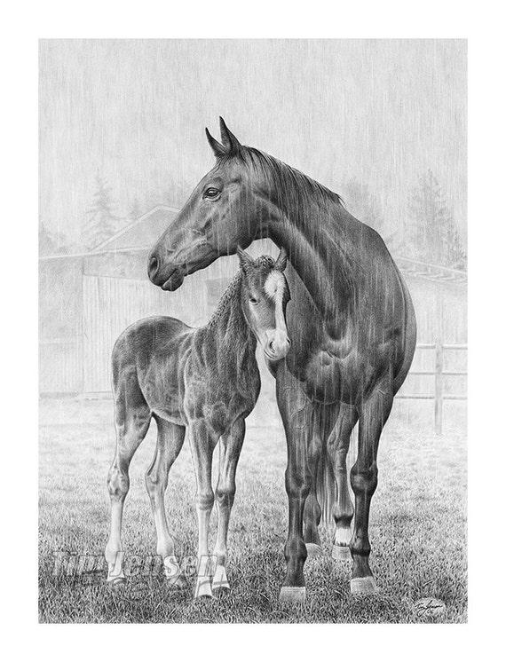 Articoli simili a cavalli in piedi sotto la pioggia madre for Disegni di cavalli a matita