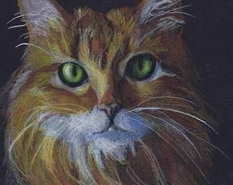 "Dramatic Orange Cat Fine Art Print of my Drawing, 5"" x 7"""