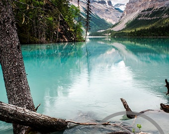 In the Shadow of Mount Robson, British Columbia, Canada, Colour Photographic Print