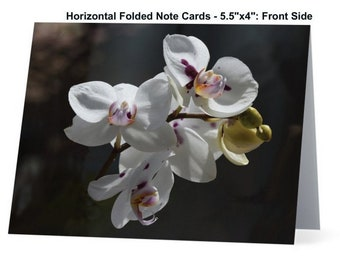 Blank, Flower Note Card, Folded Note Cards, Stationary, Photo Note Card