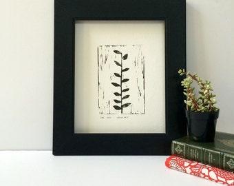 A Naturalist Garden Ivy blockprint in Grey Plant 9x12 linogravure