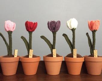 Crochet Tulip, crochet flower, handmade flower, made to order