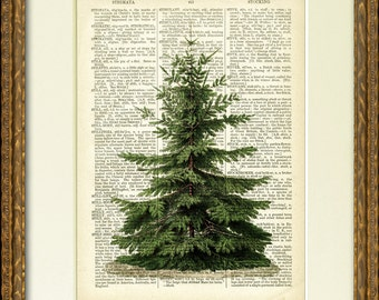 PINE TREE dictionary art print - a lovely old tree illustration on an antique dictionary page- charming vintage wall decor - Christmas art