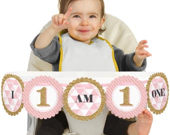 Fun to be One - 1st Birthday Girl - 1st Birthday - I Am One - First Birthday High Chair Banner - First Birthday Party Decorations