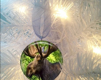 Moose #2 Christmas Tree Ornament