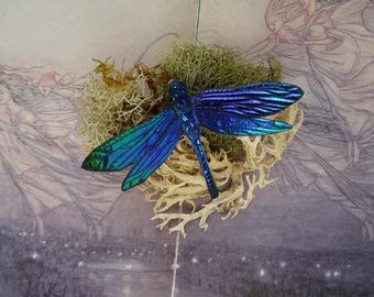 Shimmering Dragonfly Brooch ~ Electric Blue