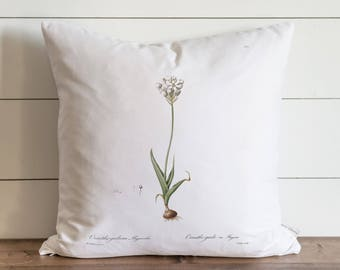 Botanical Paperwhites 20 x 20 Pillow Cover // Everyday // Gift // Accent Pillow