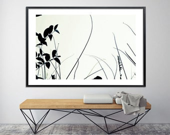 Modern Botanical Print Large Canvas Print 60x40 Large wall art minimalist poster in black and white by Duealberi