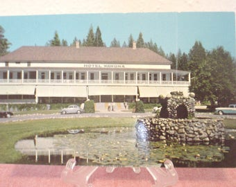 Vintage Yosemite National Park, California Hotel Wawona Post Card 363 Western Publication & Nov Co Unwritten Curteichcolor 3-D Natural Color