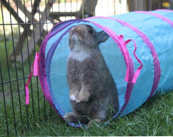 Play Tunnel for Rabbits Cats Guinea pigs Rodent Chinchilla Rat