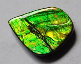 26X19X5 Natural Ammolite Cabochon Loose Gemstone