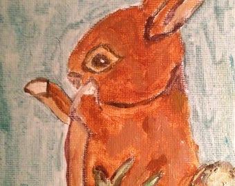 Orange Bunny Matted Print