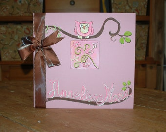 Little Owl Baby Memory Book Scrapbook Style