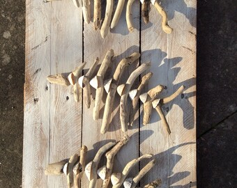 Driftwood Flying Fish