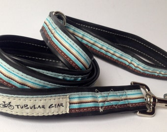 Brown and Turquoise Striped Leash