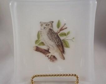 Owl Trinket Dish (TD148)