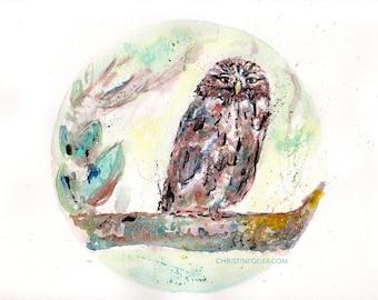 owl bird night moon watercolour painting print hahnemühle