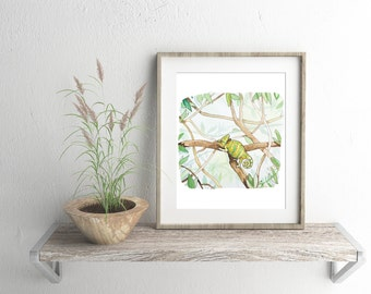 Veiled Chameleon - ALL Proceeds to Charity - Refugee Aid - animal art, printable art, jungle illustration, Digital Download, wall decor