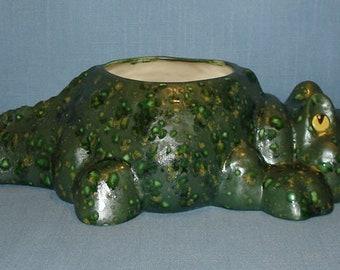 Ceramic Alligator Planter, Succulent Planter, Herb Pot, Cactus Pot, Gator Nation, Alligator Green