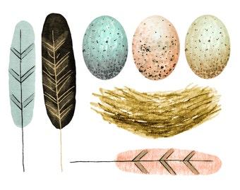Feathers clipart, bird clipart, egg clipart, nest clipart, spring clipart, wedding clipart, wedding invites
