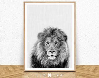 Black And White Lion Print, Lion Wall Art, Large Poster Safari, Nursery  Prints