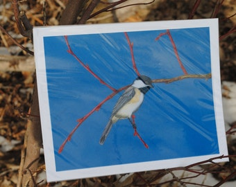 Chickadee on a basswood branch digital print