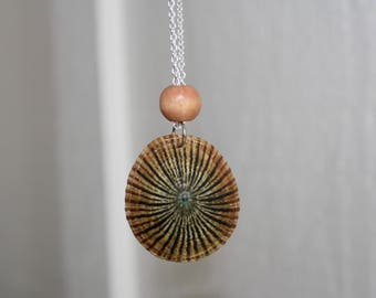 Striped Limpet Shell Necklace