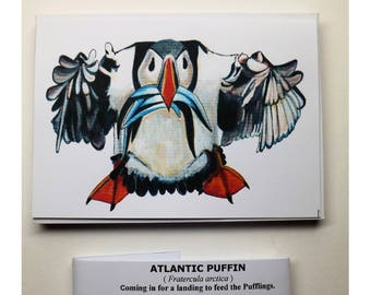10 Post Cards of a ATLANTIC PUFFIN – Coming in for landing to feed the Pufflings – Watercolor painting by: Einar D. G. Gunnlaugsson