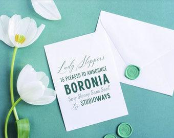 Boronia Sans Serif Font