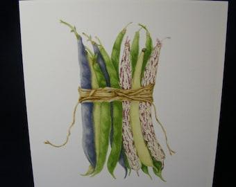 LEGUMES featuring DRAGON TONGUE Botanical Card