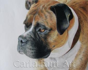 Custom Pet Portrait 8 x 10 Colored Pencil Art by Carla Kurt memorial dog cat horse