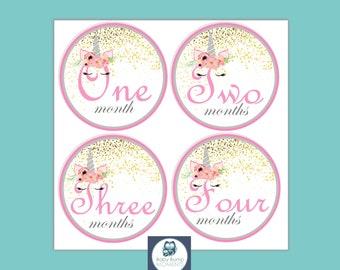 Monthly Milestone Stickers, Baby Milestone Cards, New Baby Gift, Unicorn, Glitter, Pink & Gold