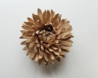 Butterscotch Chrysanthemum