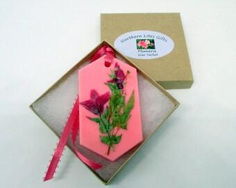 Plumeria wax sachet, floral wax tablet, bathroom air freshener sachet, housewarming gift, dried flower hanging sachet, plumeria flower decor