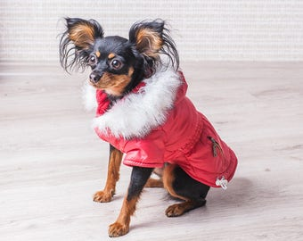 Dog clothes Shop pets Dog coat Pet clothing Pet supplies Dog Gift for pet lover Cat clothing Red jacket Animals shop Cat Jacket warm dog