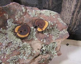 2 pretty little wooden buttons- Juniper, handmade buttons (5028)