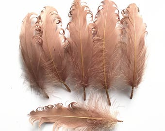 5-7 Inches Khaki Goose Feathers,Goose Plumes,Cheap Feathers,Wedding Feathers,Headband Feathers,Costume Accessories,Feather Supplies