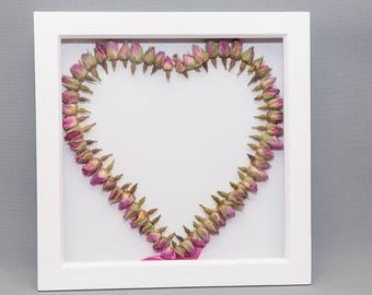 Framed Dried Rosebud Heart