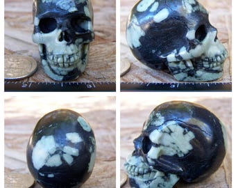 "2.0"" 3.7oz 103.7g Chrysanthemum Stone Skull Realistic Crystal Healing Magick Metaphysical Mystic Reiki Wicca Large 2 inch SK2011"