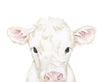 White Cow Calf Watercolor Painting 11x14 Fine Art Giclee Reproduction Nursery Art