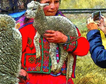 Mary had a little lamb on the way to Lake Titicaca Peru