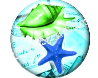 1 cabochon 30mm domed glass cabochon holidays, seashells, starfish, seahorse image shown