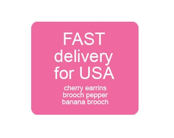 Fast Delivery for USA customers: support cherry earrings, standart pepper brooch and banana brooch