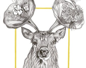 Stag of the Rising Sun. Limited edition print in A4. Signed.