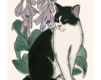 "Cat illustration cat Art Print  Botanical Cat - 4"" X 6""  - 4 for 3 SALE"
