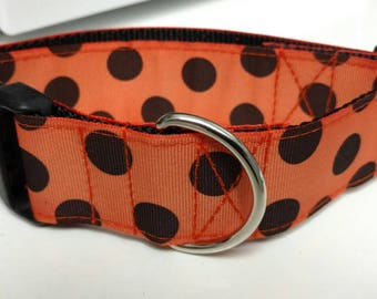 "Orange and Brown Large Polka-Dots Dog Collar 1.5"" wide - READY TO SHIP - Only 1 Available at this Price"