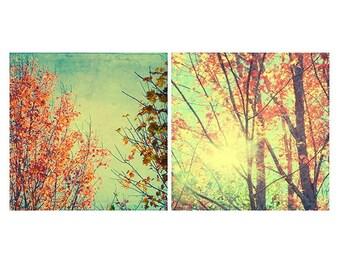 Autumn Photography Set, Two Prints, New England Landscape Art, Tree Photography, Colorful Wall Art, Nature Photography, Woodland Decor