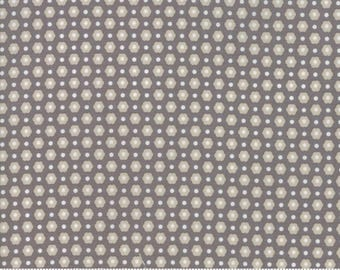 Flower Mill Stone Retro Dottie Yardage  SKU# 29034-13  Flower Mill by Corey Yoder for Moda Fabrics